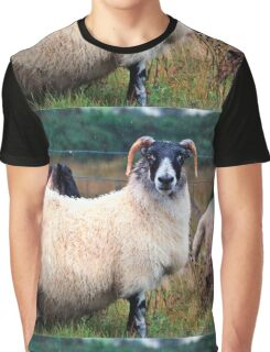 Don't Look at Me Like I was a Wet Sweater (On the road to Mallaig, Scotland) Graphic T-Shirt