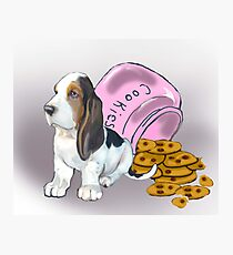 Basset Hound and Cookies Photographic Print