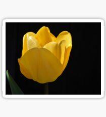 A Beautiful Flower Sticker