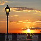 Battery Park Sunset by Barbny