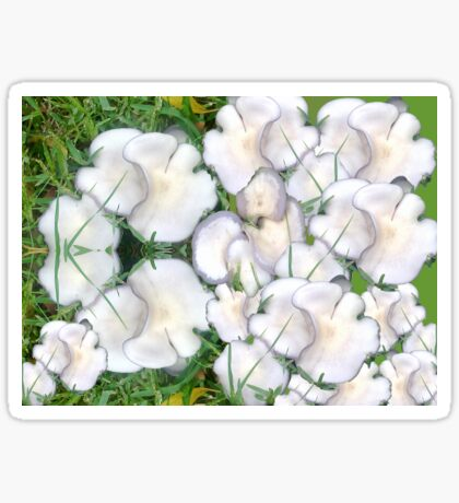 Mushroom Maddness Sticker