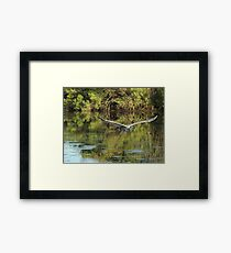 Heron at You Framed Print