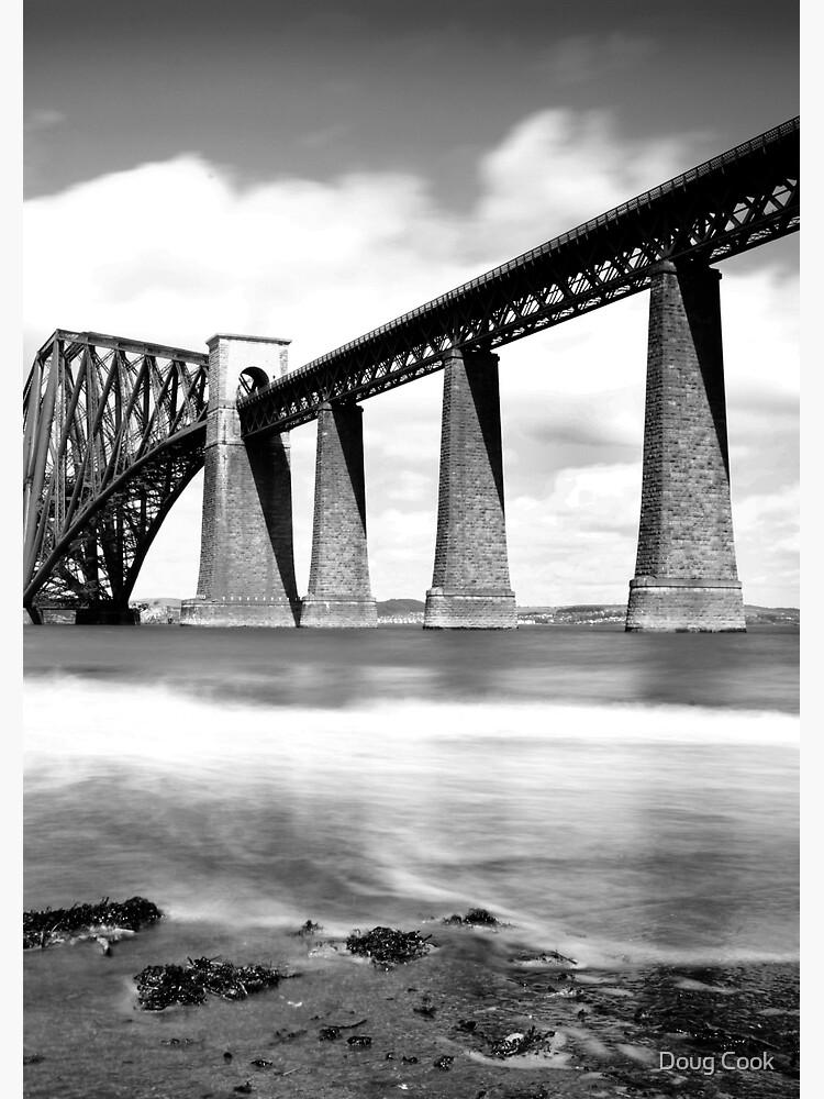 The Rail Bridge by DougCook
