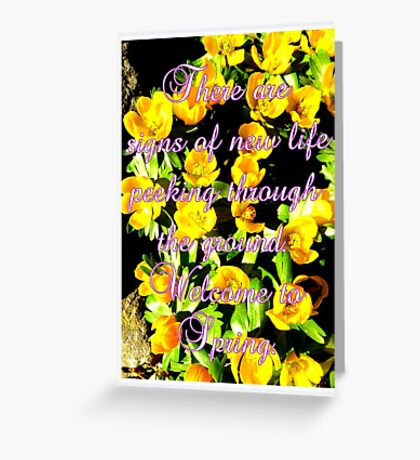 Welcome to Spring Greeting Card