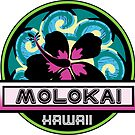 MOLOKAI Hawaii Hibiscus Flower Wave Travel Vacation Decal Pink Green by MyHandmadeSigns