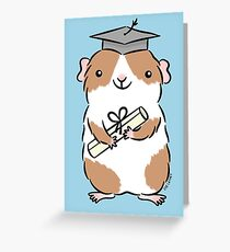 Graduation Guinea-pig  Greeting Card