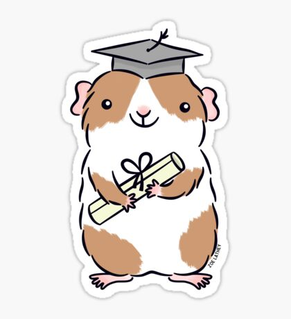 Graduation Guinea-pig  Sticker