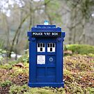 Travel's With The Tardis by minifignick