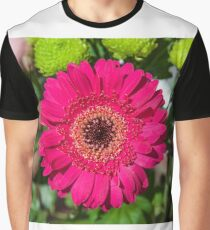 TRANSVAAL DAISIE Graphic T-Shirt