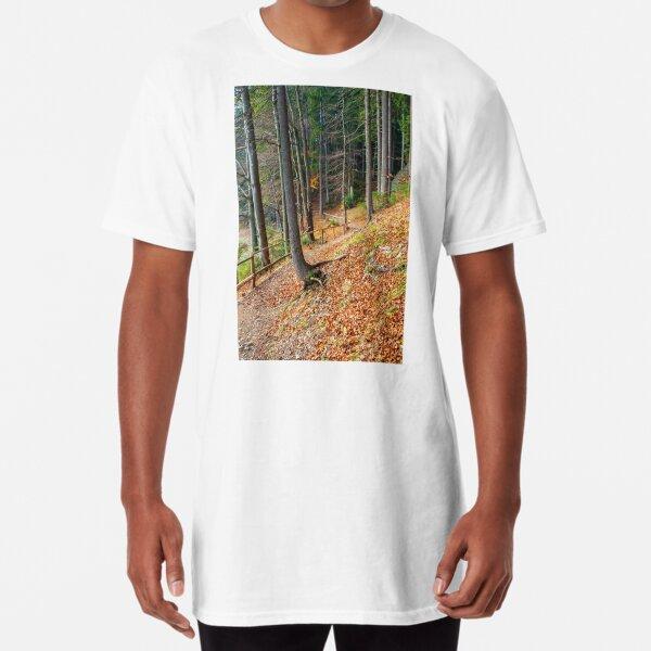 footpath through autumn forest in late autumn Long T-Shirt