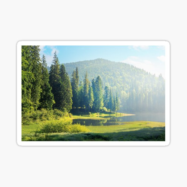 amazing landscape with mountain lake among forest Sticker