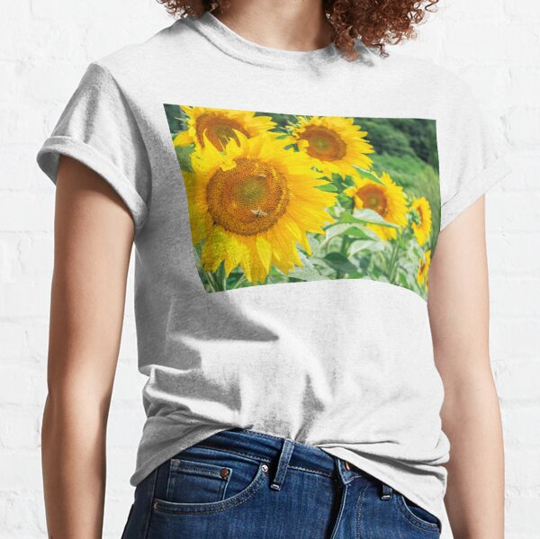 sunflowers in the field Classic T-Shirt