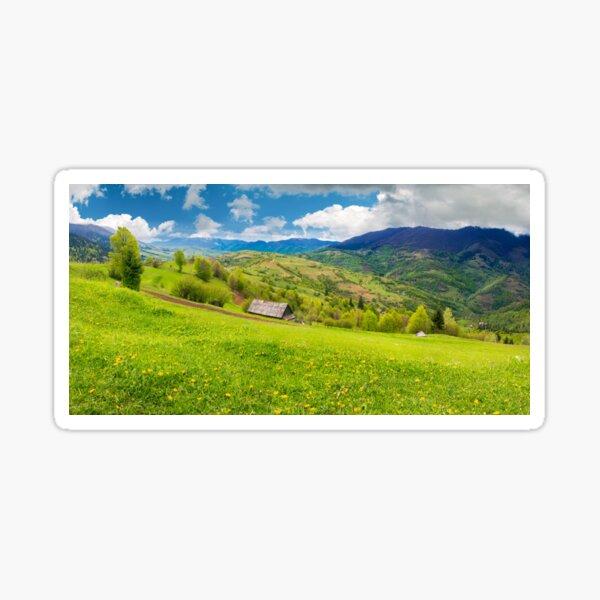 dandelions on rural field in mountains Sticker