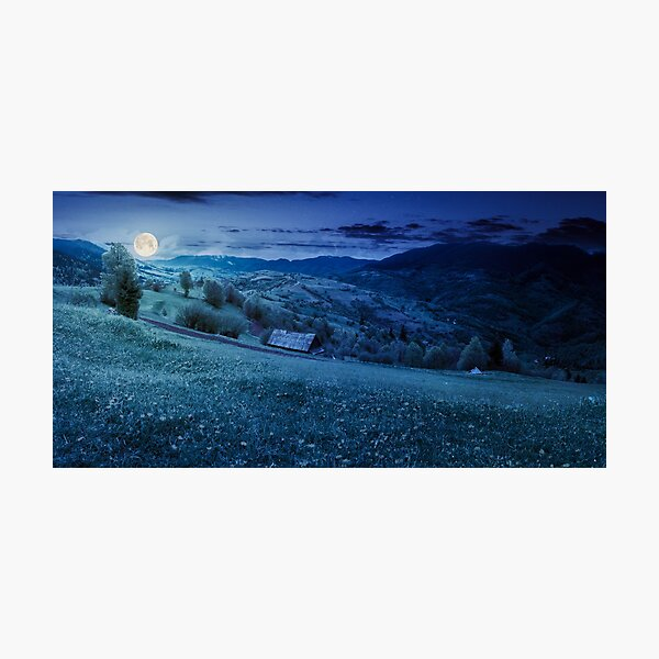 dandelions on rural field in mountains at night Photographic Print