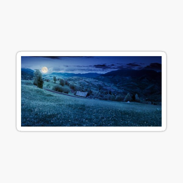 dandelions on rural field in mountains at night Sticker
