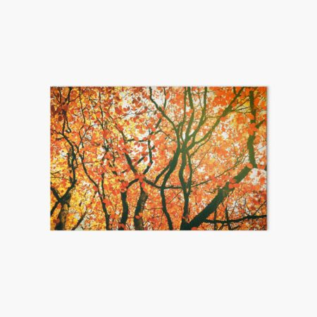 Autumn Leaves Art Board Print