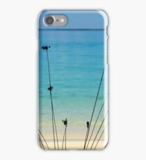 Cocos Outlook iPhone Case/Skin