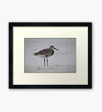 Piper Framed Print
