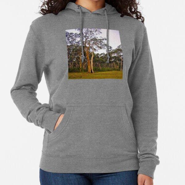 Gum Trees, Eucalyptus Trees Lightweight Hoodie