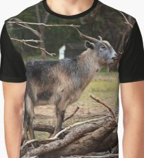 Old Goat Graphic T-Shirt