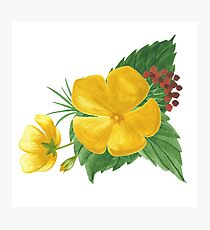 Summer watercolor beautiful tropical flower Photographic Print