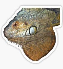 exotic reptile Sticker