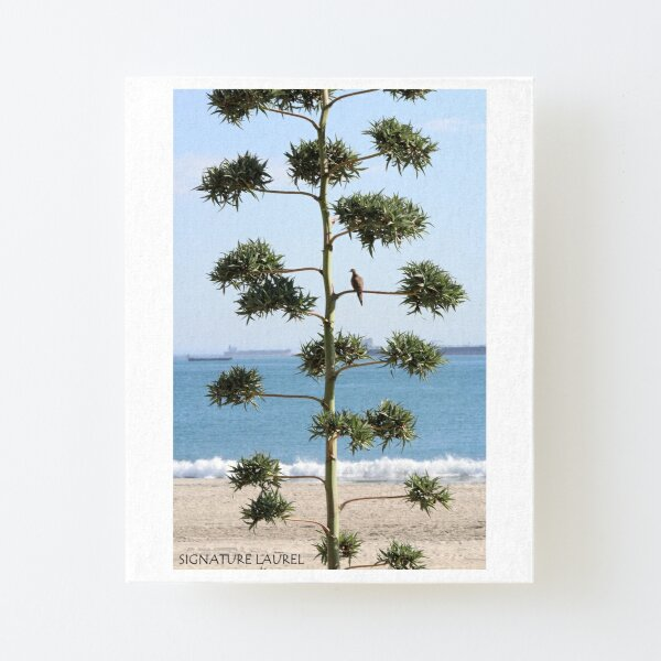A Dove on a Tree Canvas Mounted Print