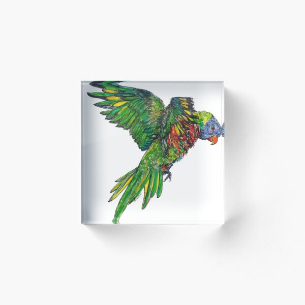 Alina the Rainbow Lorikeet Acrylic Block
