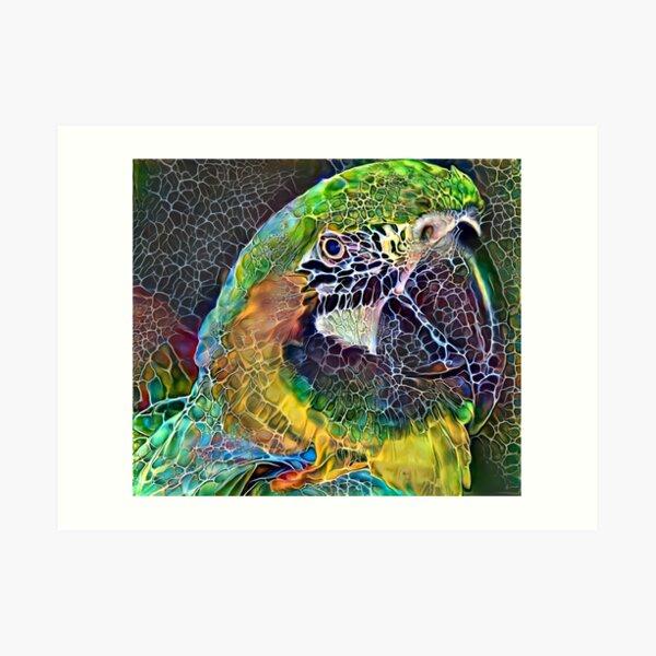 Quadrangle of the Birds Art Print