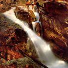 Montana Falls by Wayne King