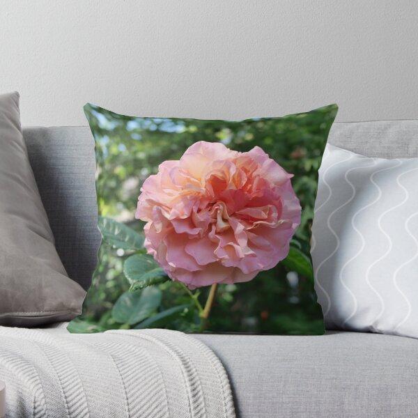 Fragrant Rachel Hybrid Tea Rose Throw Pillow
