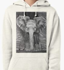Sheltered Pullover Hoodie
