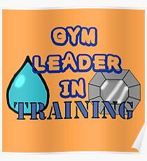 Gym Leader Poster