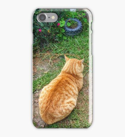 When your cat is angry with you. iPhone Case/Skin