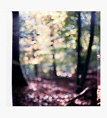 meanwhile Photographic Print