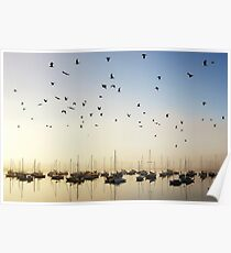 Fly by - Limeburners Lagoon Poster