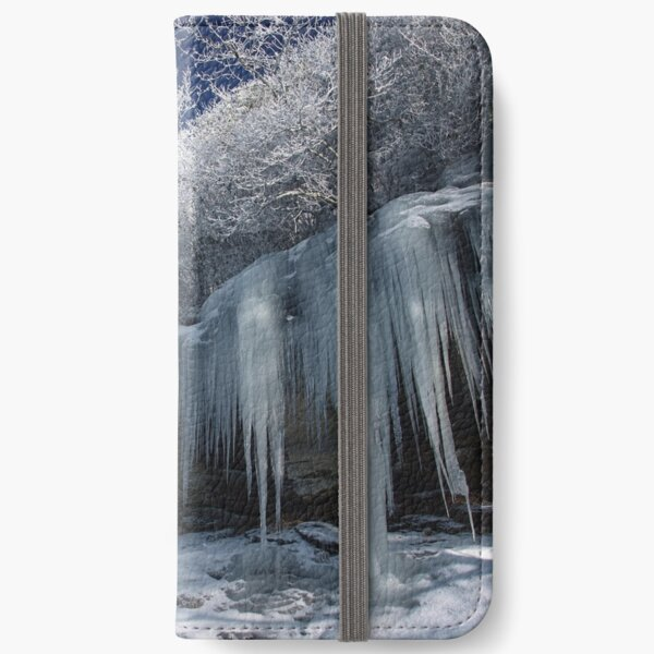 Ice iPhone Wallet