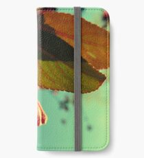 Afternoon Delight iPhone Wallet