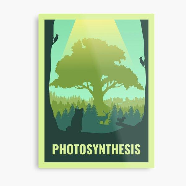 Photosynthèse - Jeu de société - Style d'affiche de voyage minimaliste - Art du jeu Impression métallique