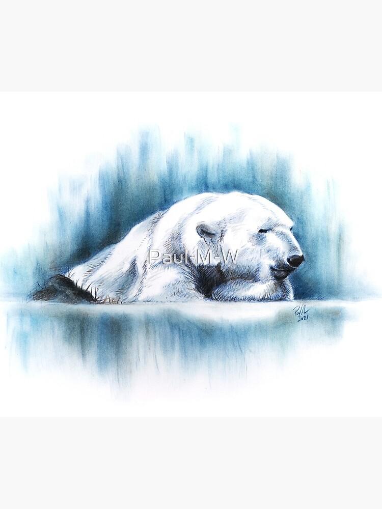 Just Chillin', Polar Bear Pastel Drawing, Print, Greeting Card, Mug, Coasters, and Cushions by Paul-M-W