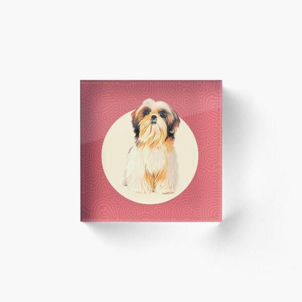 Cute Shih-Tzu dog illustration with fun colors Acrylic Block