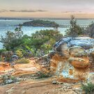 View To Bare Island by Michael Matthews