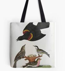 Alexander Wilson - Red Winged Starling Black Poll Warbler Lesser Red Poll Tote Bag