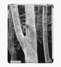 Beeches iPad Case/Skin