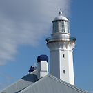 Green Cape Lighthouse 2 by Jennifer J Watson