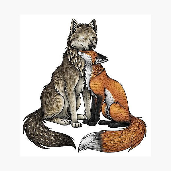 Wolf & Fox Photographic Print