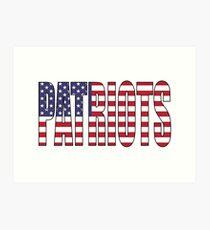 Patriots Art Print