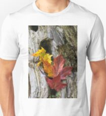 Maple Leaves Coloured from Autumn in yellow to red T-Shirt