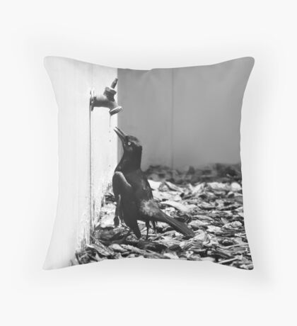 Bird Queue Throw Pillow