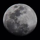 Lunar Surface by Bob Hardy